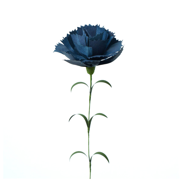 carnation dark blue